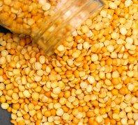 Hot selling soya dehulling machinery in India